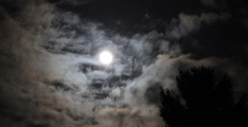 2015-04-04 - Vigile pascale La Reid (25)