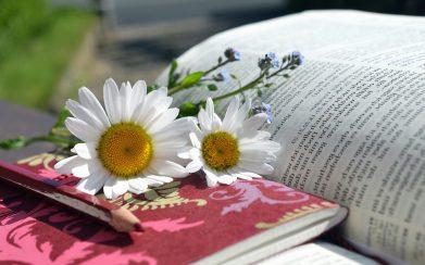 Un bon livre pour se ressourcer...